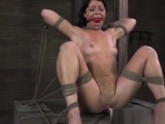 Ballgagged Frogtied Petite Babe Punished