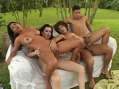 Bisex fellows love banging each other and angels