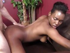 Ashton Devine Porn Videos